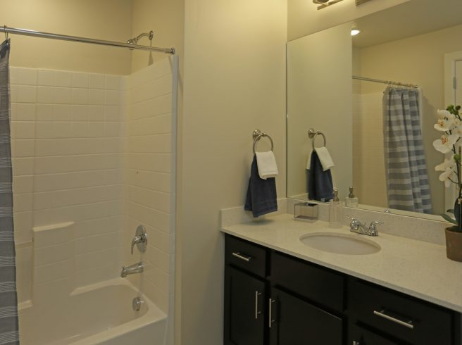 The Ridge Apartments, Guest Bathroom