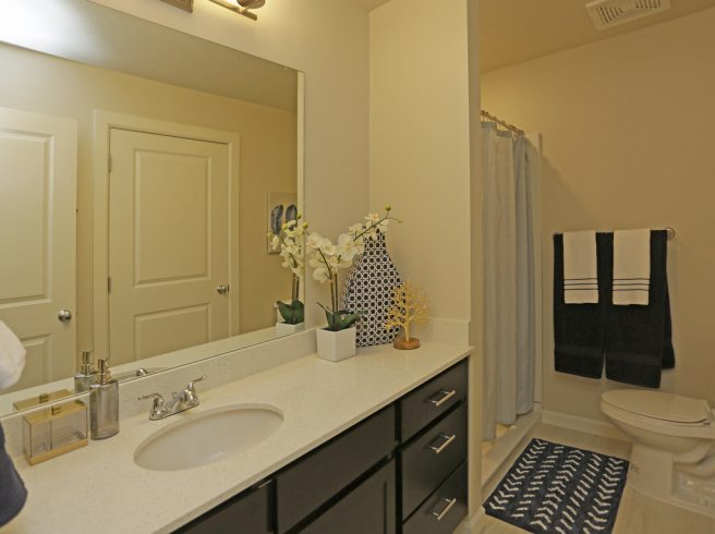The Ridge Apartments, Master Bathroom